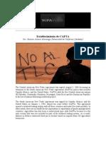 Nueva Si_ntesis-5 de Agosto, 2012-Establecimiento de Cafta