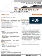 Diplomado Desarrollo de Habilidades Gerenciales Aplicadoa a La Mineria (1)