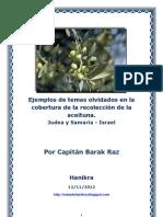 Ejemplos de temas olvidados en la cobertura de la recolección de la aceituna. Judea y Samaria