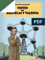 Bruselas y Valonia  - belgica - (in spanish)