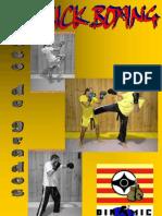 Paso Grados Kickboxing