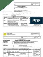SAP P3