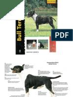 Bull Terrier B. Gibson
