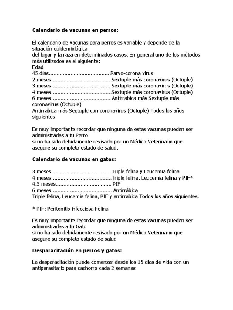 Calendario Vacunas Perros.Calendario De Vacunas En Perros Vacunas Salud Publica