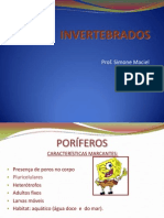 Invertebrados - Prof. Simone