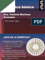 Bases de Genetica