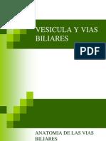vesiculayviasbiliares-090405123826-phpapp02