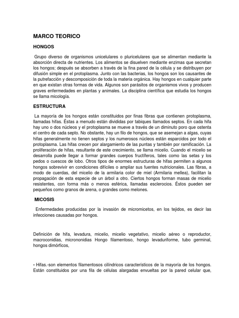 Perfecto Marco Patógeno Aéreo Colección - Ideas de Arte Enmarcado ...