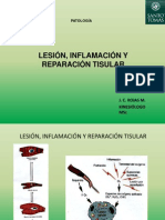 Clase 1.1. A  Lesión, inflamación y reparación tisular Patología UST KIN 2012