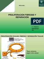 Clase 1.1. B  Proliferación fibrosis y reparación Patología UST KIN 2012