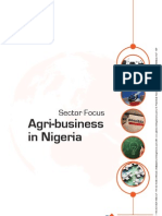 Pi Article - Nigeria - Agri- Business.pdf