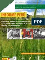 1 Informe Sobre Progresos y Desafios Del Derecho a La Alimentacion
