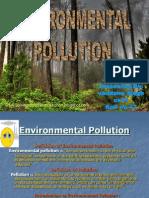 Environmental Polution