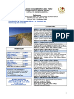 afiche DIPLOMADO.pdf