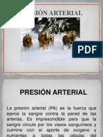 cardiovascular Presión arterial-2012