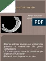 Esquistossomose (1)