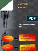 Anatomi Dan Faal 1
