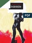 Indeleble Final