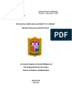Financial Risk Management for MFI