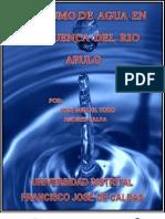 Consumo de Agua Cuenca Rio Apulo