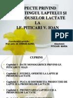 Piticari Maria-Prezentare.ppt