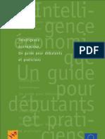 Guide débutant intelligence économique