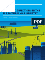 Black & Veatch Natural Gas Report 2012