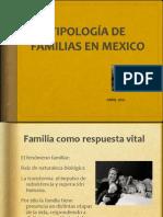 Tipos de Familia Para Ejercicio