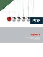 Capítulo+1+Informe+CYD+2011