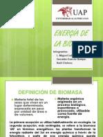 ENERGIA DE LA BIOMASA