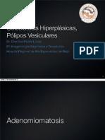 Adenomiomatosis