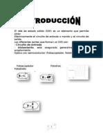 monografia pambur