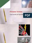 PRINCIPIOS TERMICOS - Cópia
