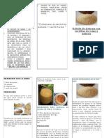 Receta Bebida Nutritiva de Quinua