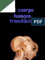 CuerpoHumano(BH(DF