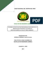 Informe de Practicas Preprofesionales