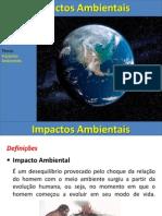 impactos ambientais resumido1ANO