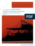 Credit Risk Commodity Producers