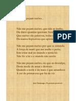 Poema Saramago
