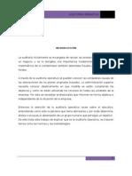 Trabajo de Exposicion-Auditoria Operativa
