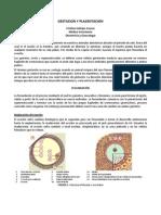 Apunte 3_gestacion y Placentacion