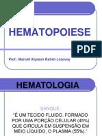Aula 1 Hematopoiese