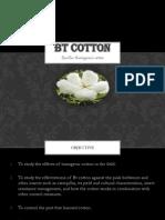 Bacillus thuringiensis Cotton Bt Cotton pptx