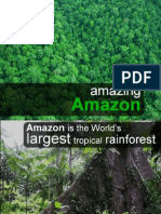 amazing amazon slideshare