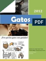 Revista de Gatos