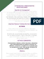 Tarea de Proyectos Y Presupuestos (Cronograma,Activos y Pasivos de Una Empresa Y Un Ejemplo de Cronograma)