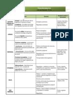 CN9 - nutrientes - ficha informativa