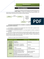 CN9 - regulação hormonal - ficha informativa