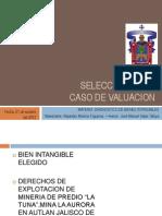 Sellecion de Bientangible Pp