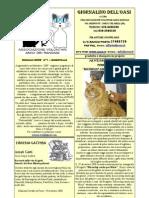 Giornalino del Gattile Avar  n°1 -  Gennaio 2009